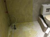 Koupelna Úpice